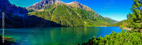 Photo Stands Trees Morskie Oko in Tatry mountains