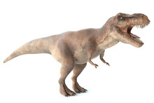 3d Illustration Of A Tyrannosa...