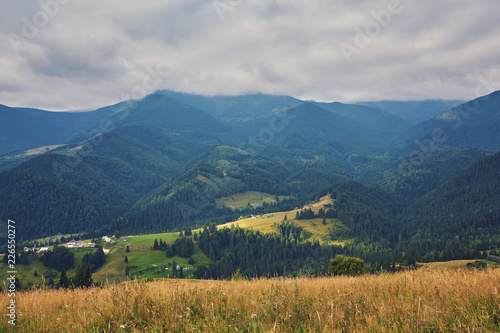 Fototapeta mountainous landscape with forested hills. beautiful summer obraz na płótnie