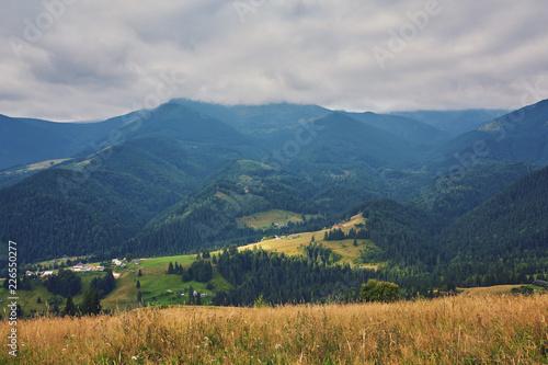 Fototapeta mountainous landscape with forested hills. beautiful summer obraz na płótnie