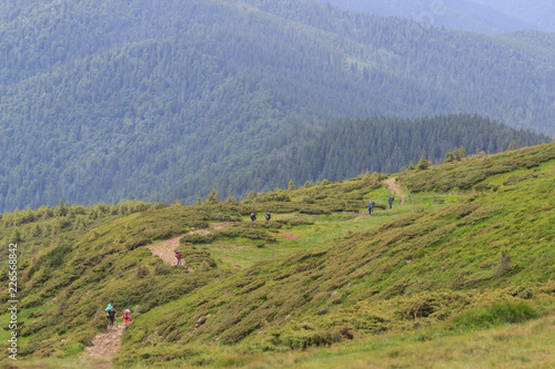 Valley of the Carpathian Mountains