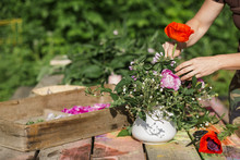 Midsection Of Woman Putting Fresh Flower In Vase On Wooden Table
