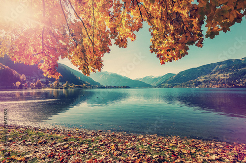 Wall mural - Sunny Day at the Lake Zell, in Ausrtian Alps. Colorful Leafes under Sunlight. Unusual Summer Landscape. Vintage style. Instagram Filter. Zell am See. Austria. Nature Background.