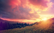 Fantastic Colorful Landscape. ...