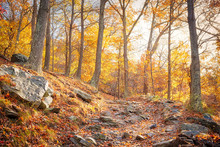 Hiking Rocky Trail Through Colorful Orange Foliage Fall Autumn Forest With Many Leaves, Rocks, Stones On Path In Harper's Ferry, West Virginia, Sun Behind Sunburst Trees, Fallen Leaf