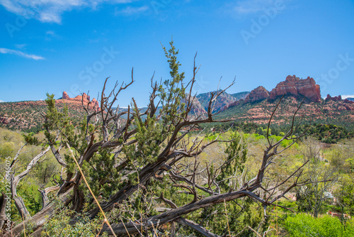 Photo Landscape in Sedona