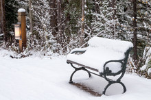 Snow Covered Bench Along Path ...