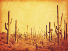 Landscape Of The Desert With S...