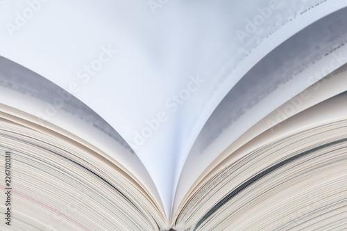 Fotografia, Obraz  dictionnaire ouvert
