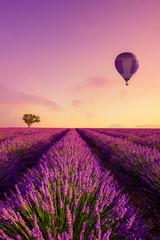 Wiersze pola lawendy o wschodzie słońca i balonem na gorące powietrze Francja Prowansja