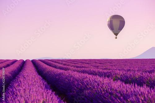 Obraz Lawendowe pole nad którym leci balon - fototapety do salonu