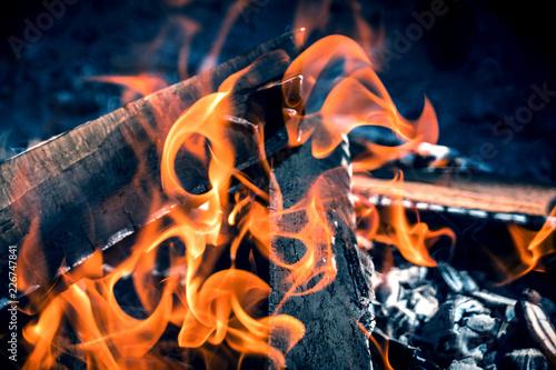 Fotografiet  Burning and smoking wood logs