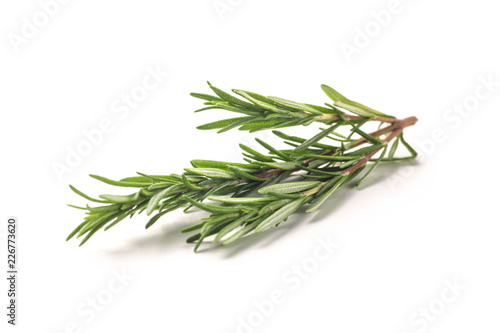 Fresh rosemary bunch isolated on white background Wallpaper Mural