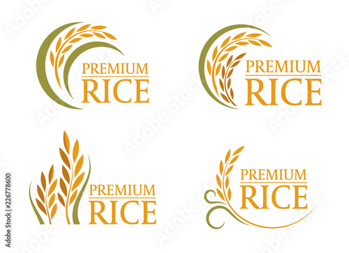 Fototapeta yellow and green paddy premium rice logo sign 4 style vector design