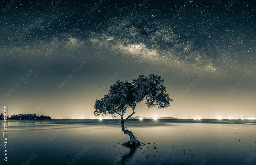 Fototapeta Black and white image of Night sky with stars and silhouette mangrove tree in sea. Long exposure photograph.