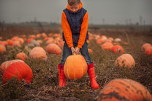 Cute Boy Picking Out A Pumpkin...