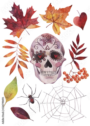 Printed kitchen splashbacks Watercolor skull Hand painted watercolor illustrations. Set of Halloween elements and objects.