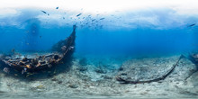 Benwood Wreck With Fish