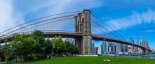 Panoramic Brooklyn Bridge Landscape