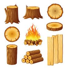 Set Of Logging, Stumps And Boa...