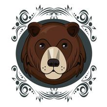 Bear Face Cool Sketch