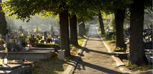 Cmentarz - Uroczystość Wszystkich Świętych