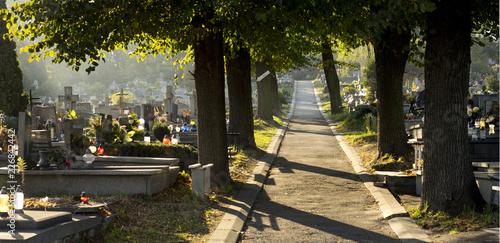 Fototapeta Cmentarz - Uroczystość Wszystkich Świętych obraz