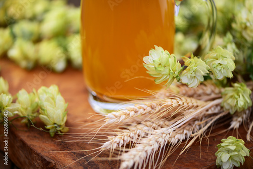 Tuinposter Bier / Cider Bier,Hopfen