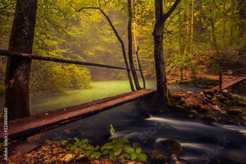 Foto auf Gartenposter Forest river River flowing from a natural lake into a forest with an opening above the lake with some fog and two wooden bridges in the foreground making a path to the hiking trail