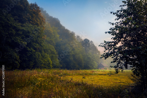 Foto op Aluminium Chocoladebruin Small house found near a forest in the morning before sunrise with fog in the valley in a scenic landscape