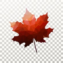 Vector Maple Leaf With Red Tri...