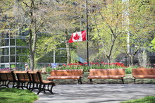 Canadian Flag At Half Mast In Park At Place Du Canada