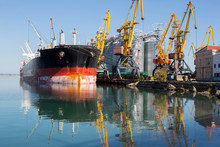 Panamax Bulk Carrier Loaded Wi...