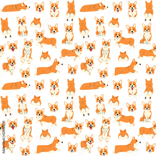 fototapeta na ścianę corgi in action,seamless pattern