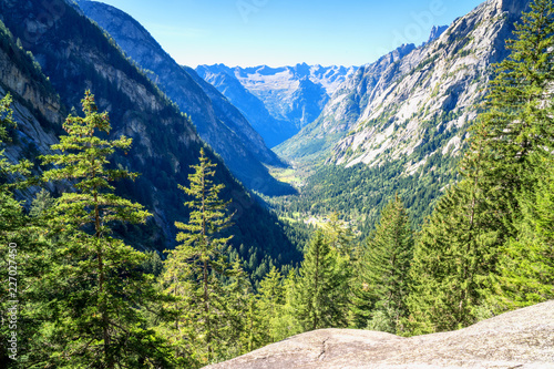 Landscape of alpine valley with coniferous forests and rock faces Canvas Print