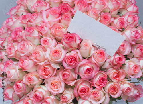 Rose Pink Flower Bouquet Roses Flowers Love Nature Wedding Isolated White Bunch Gift Valentine Floral Beautiful Petal Beauty Blossom Red Romance Anniversary Birthday Romantic G Buy This Stock Photo And Explore