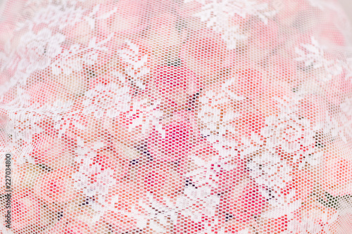 Pink Flower Floral Flowers Pattern Rose Spring