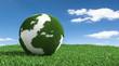 3D Illustration Erde mit Gras im Rasen
