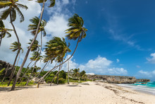 Bottom Bay Is One Of The Most Beautiful Beaches On The Caribbean Island Of Barbados. It Is A Tropical Paradise With Palms Hanging Over Turquoise Sea And A Pirate Cave.