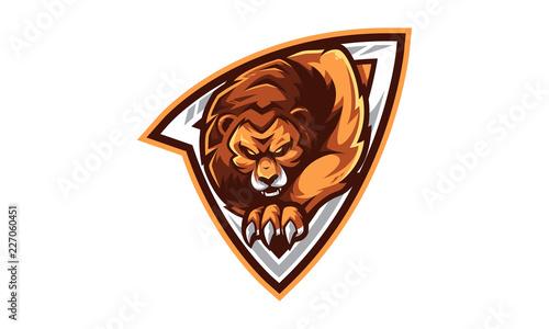 Fotografie, Obraz  Lion Esports