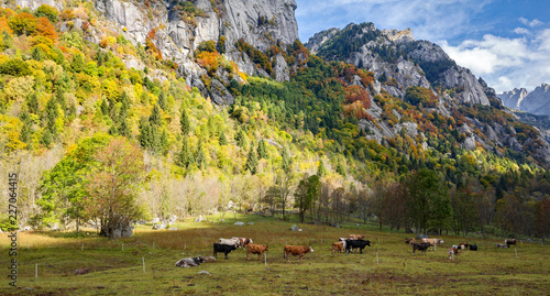 Photo  Val di Mello - Valtellina (IT) - Paesaggio autunnale - Vista aerea