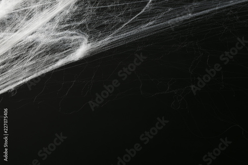 Valokuva Halloween creepy cobweb spiders web with a black background