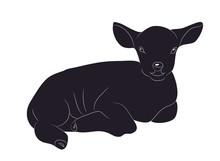 Lamb Lies Drawing Silhouette, Vector