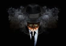 Cat-Rorschach