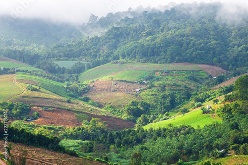 Poster South America Country Beautiful morning sunrise view on little mountainous village and the mist are beauty on view point at Phuhinrongkla National Park Nakhon Thai District in Phitsanulok, Thailand.