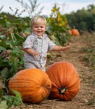 Little Boy In A Pumpkin Patch
