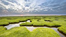 Erosion Holes In Grassland Of Tidal Marsh Of Dollard