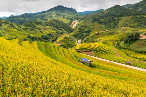 Spoed Foto op Canvas Oranje Mu Cang Chai terraces rice fields in harvest season