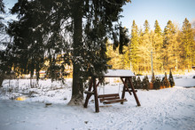 Snow-covered Garden Swing Near A Tall Pine Tree