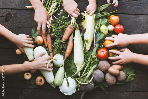 Fotografie, Obraz  Sustainable farmer harvest, agriculture garden vegetables.